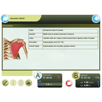 Η Combi 400 διαθέτει λεπτομερείς ανατομικούς χάρτες με πληροφορίες για τους μύες και τους συνδέσμους